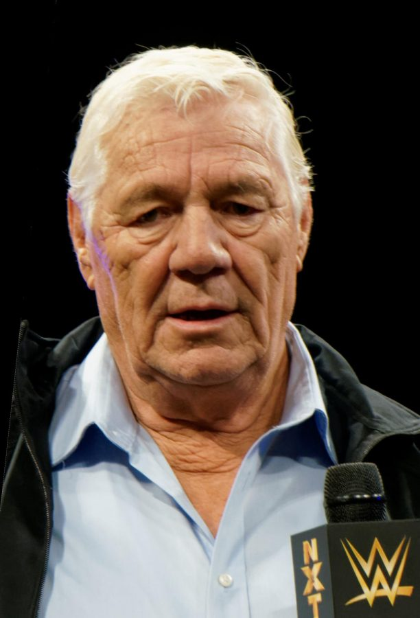 Pat Patterson April 2014