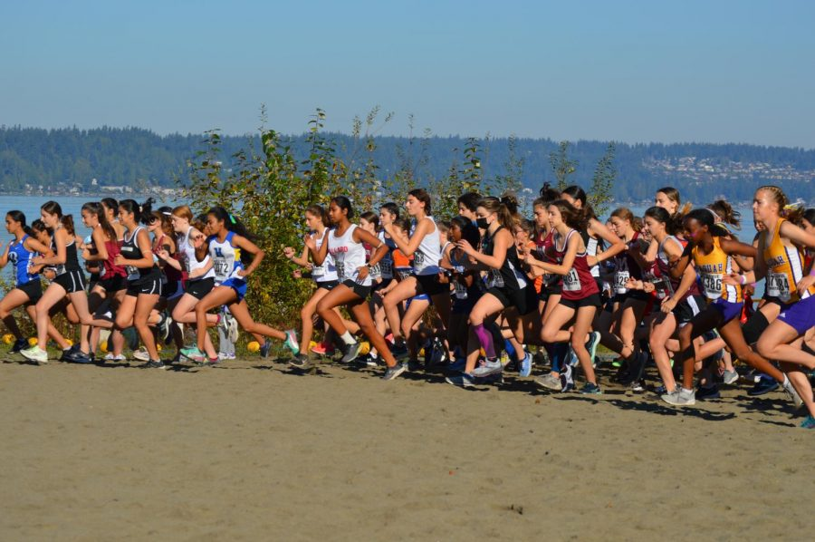 Bellevue cross country start